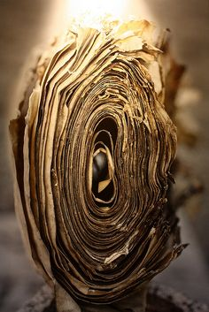 A dying book's fingerprint ~ from 'Last Folio', an exhibition of decayed books by Yuri Dojc.  Cambridge University.