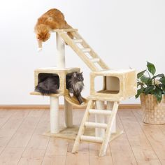 Allow your cats natural scratching instincts to flourish with this Malaga scratching post from Trixie. Multiple platforms and scratching posts will keep your cats off your carpets and furniture and pr