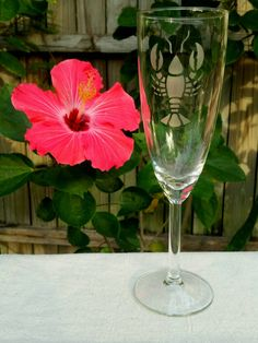 Check out this item in my Etsy shop https://www.etsy.com/listing/262295862/beach-brunch-lobster-beach-champagne