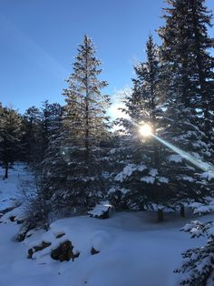 Estes Park, CO in January vanillagorilla12345 - #funny #lol #viralvids #funnypics #EarthPorn more at: http://www.smellifish.com
