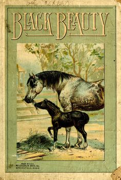'Black Beauty:  the autobiography of a horse' by Anna Sewell. McLoughlin Bro's., Inc., Springfield, Massachusetts, 1870