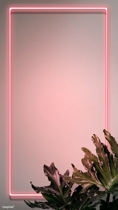 tropical pink neon lights phone screen wallpaper premium image by rawpixel com hwangmangjoo 5837 # Phone Screen Wallpaper, Flower Phone Wallpaper, Framed Wallpaper, Pink Wallpaper Iphone, Cute Wallpaper Backgrounds, Pretty Wallpapers, Flower Backgrounds, Lock Screen Backgrounds, Tropical Wallpaper