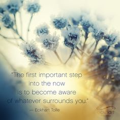 How to Magically Manifest an Epic Life. Spiritual Quotes, Wisdom Quotes, Life Quotes, Spiritual Awakening, Eckhart Tolle, Psalm 5 3, Now Quotes, Basic Yoga, Spiritual Teachers