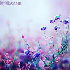 DatisBazar | داتیس بازار: 🌺سال نو را زیباتر بسازیم...  https://DatisBazar.com  @datisbazar