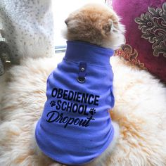 Obedience School Dropout - Now, Here Are Some Funny Threadz – Robins Online Shopping #funnydogshirts Dog Hoodie, Dog Shirt, Funny Dog Memes, Funny Dogs, Pet Dogs, Pets, Funny Tank Tops, T Shirt Vest, Animals For Kids