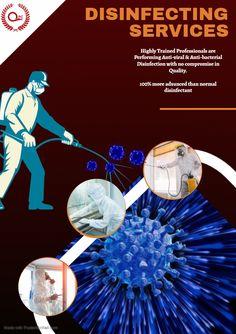 Best Pest Control, Pest Control Services, Sharjah