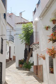Spanish Garden, Luxury Homes Dream Houses, Balcony Design, World View, Old Buildings, Andalucia, Paint Designs, Nature Photography, Beautiful Places