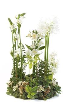 Nice naturalistic arrangement - I like this Easter Flower Arrangements, Funeral Flower Arrangements, Easter Flowers, Spring Flowers, Floral Arrangement, Deco Floral, Arte Floral, Floral Design, Church Flowers