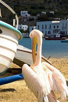 Mykonos, Villas, Greece, Italy, Greece Country, Italia, Villa, Mansions