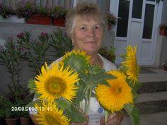 Buni cu floarea soarelui