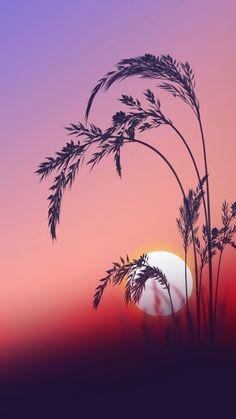Sunrise+Wallpapers+Galaxy+S7+Edge.jpg (900×1600)