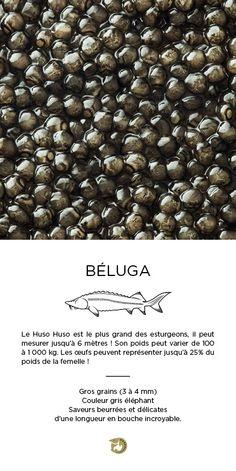 Caviar Béluga Impérial #kaviari Caviar, Great Recipes, Beans, Castle, Vegetables, Food, Geneva, Cooking, Grosgrain