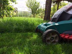 Das erste Mal mähen unseres neu angelegten Rasens!