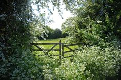 Inspiring image countryside england fence garden gate green Resolution: Find the image to your taste! Cottage In The Woods, Garden Gates, Farm Life, Country Life, Country Living, Land Scape, Mother Nature, Nature Nature, Nature Images