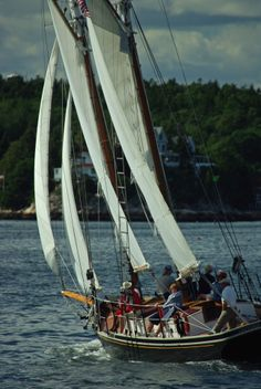 A beautiful schooner operating out of Boothbay harbour. Team Building Activities, A Team, Sailing Ships, New England, North America, Island, Sail Boats, 17th Century, Dutch