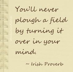 """You'll never plough a field by turning it over in your mind."" ~ Irish Proverb"