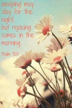 No matter what the night holds................. Joy comes in the morning..................