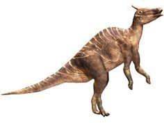 B0109 - Saurolophus Life Size Dinosaur Replica - B0109 - Saurolophus Life Size Dinosaur Replica.jpg