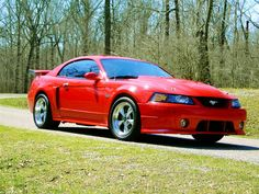 2004 Mustang GT purchased in PA. Stick shift, very fast..trust me