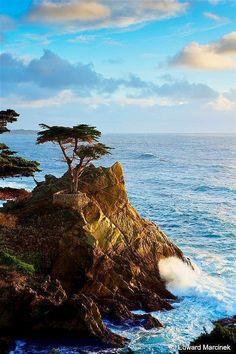 Monterey peninsula, California- can't wait to go back.