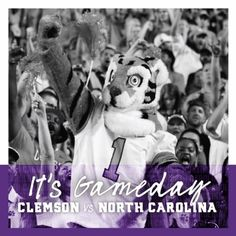Get up Tigers! It's Gameday! Beat UNC 🐯 #allin #ggww #beatunc #clemsonfootball Clemson Football, Get Up, Tigers, North Carolina, Teddy Bear, Animals, Stand Up, Get Back Up, Animales