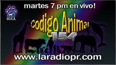 progrma de radio via internet www,laradiopr.com CODIGO ANIMAL 154