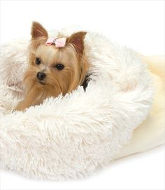 Ivory Cuddle Cup Dog Bed