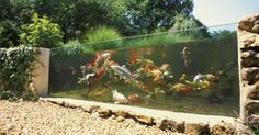 Liked on Pinterest: Raising your koi pond above ground like this allows you to see fish swimming
