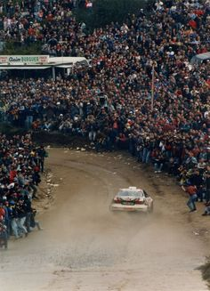 Rally fans.