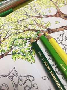 Colored Pencil Tutorial Techniques Drawings Color Art Pencils Coloring Tips Books