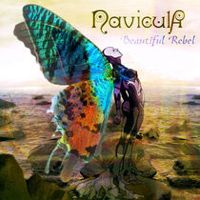 Listen to Beautiful Rebel by Navicula on @AppleMusic.