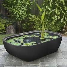 Unique shapes in containers make a great showcase for water features. Tin bucket pond ideas | Galvanized tub water gardens | Rustic water features. www.ContainerWaterGardens.net