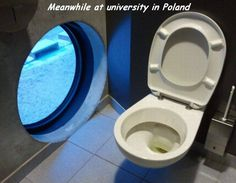 Meanwhile at university in Poland (Funny Weird Pictures) - #poland #restroom #toilet #university #window