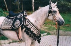 silver show saddle | Egyptian-Items - Arabian silver horse saddle (Powered by CubeCart)