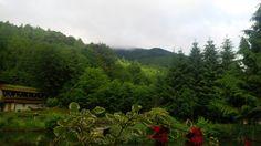 Morning view....Valea Ierii, Cluj Morning View, Vineyard, Mountains, Nature, Travel, Outdoor, Outdoors, Naturaleza, Viajes