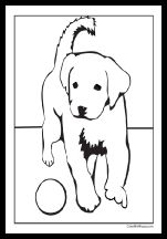 26 Best Animal Coloring Pages Images In 2020 Farm Animal