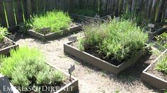20+ Ideas for your home veggie garden  - square raised herb beds