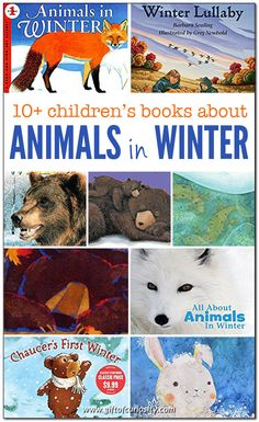 children's books about animals in winter. Learn which animals hibernate, migrate, store food, and stay put for the winter. Science Activities For Kids, Preschool Books, Preschool Winter, Winter Activities, Toddler Books, Childrens Books, Arctic Animals, Reading Rainbow, Animals