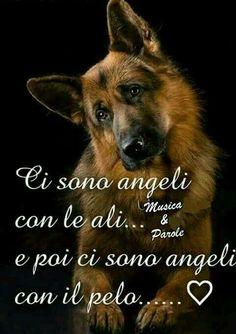 Mi fido solo del mio cane ;)