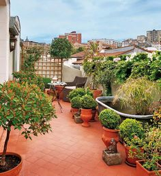 One of the greatest ideas to decorate a little patio is to turn it into a gorgeous garden. Starting a patio garden isn't hard. It should never be designed in isolation without considering the rest of the garden. Apartment Balconies, Attic Apartment, Rooftop Garden, Balcony Garden, Diy Pergola, Outdoor Spaces, Outdoor Living, Outdoor Decor, Balcony Design