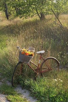 Country Life, Country Living, Country Roads, Country Art, Fairytale Garden, Photo Velo, Old Bikes, Bike Art, East Sussex