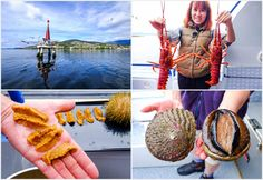 Tasmanian Seafood Seduction brings us to Tasmania's most spectacular coastal scenery and give us a chance to taste the best of seafod produce.