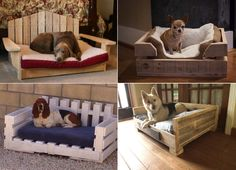 ShareThere are plenty of DIY Ideas and fun projects to do at home. Many craft ideas that you can do at home will help you fill your home with practical things without spending too much money if you were to purchase the items.DIY dog bed using wooden pallets are wonderful practical ideas that you can …