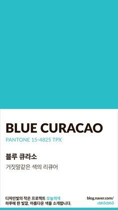 Flat Color Palette, Earthy Color Palette, Colour Pallette, Pantone Colour Palettes, Pantone Color, Mint Color, Colour Board, Color Swatches, Color Shades