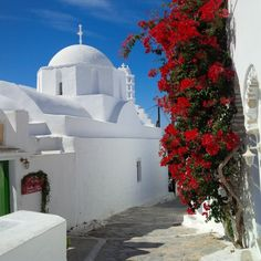 GREECE CAHNNEL | The beautiful red bougainvillaeas and #Amorgos Church in the hilltop village of Chora, the capital #Greece #vacation planning. http://www.greece-channel.com/