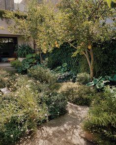 Love Garden, Dream Garden, Home And Garden, Vanity Makeup Rooms, Gravel Path, Potters House, Garden Landscaping, Outdoor Living, Outdoor Spaces