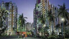 New Project in Gurgaon | Mnc Probuild pvt ltd | Property in Gurgaon
