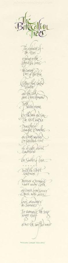 ✍ Sensual Calligraphy Scripts ✍ initials, typography styles and calligraphic art - John Stevens
