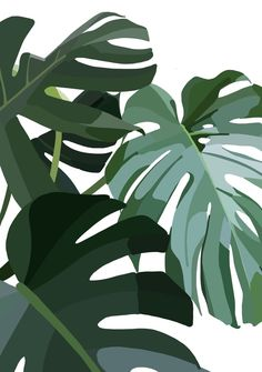 Plant Aesthetic, Aesthetic Painting, Aesthetic Gif, Aesthetic Backgrounds, Aesthetic Iphone Wallpaper, Blue Aesthetic, Aesthetic Pictures, Aesthetic Wallpapers, Aesthetic Clothes