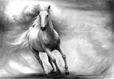 Horse drawing PRINT of an original graphite by DrawingIllustration, $17.79